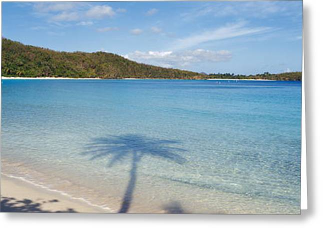 Shadow Of Trees On The Beach, Hawksnest Greeting Card by Panoramic Images