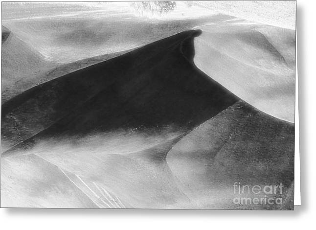 Shadow On The Land Greeting Card by Newel Hunter