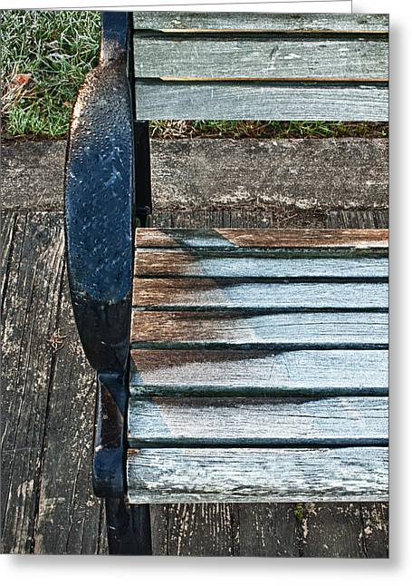Greeting Card featuring the photograph Shadow Protecting Frost On Bench by Gary Slawsky