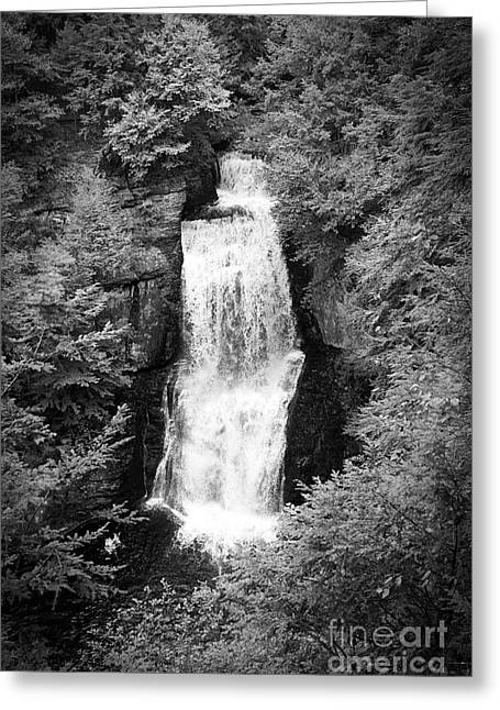 Shadowed Falls Greeting Card