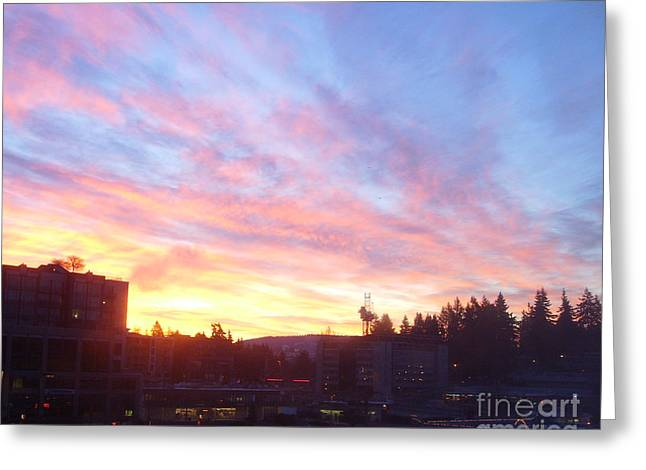 Shadows And Color In The Pacific Northwest Greeting Card by Alexander Van Berg