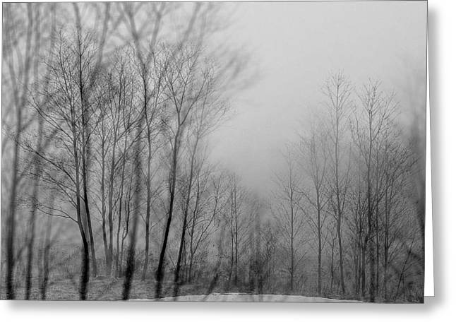 Shadows And Fog Greeting Card