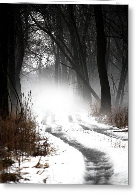 Shadows And Mist At Mentha Greeting Card by Penny Hunt
