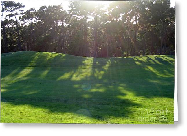 Shadows At Poppy Hills Greeting Card