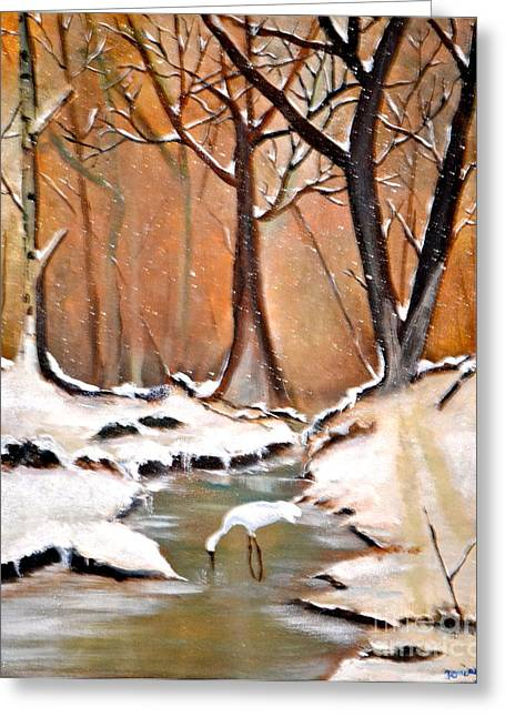 Shadows Beyond Winter Greeting Card