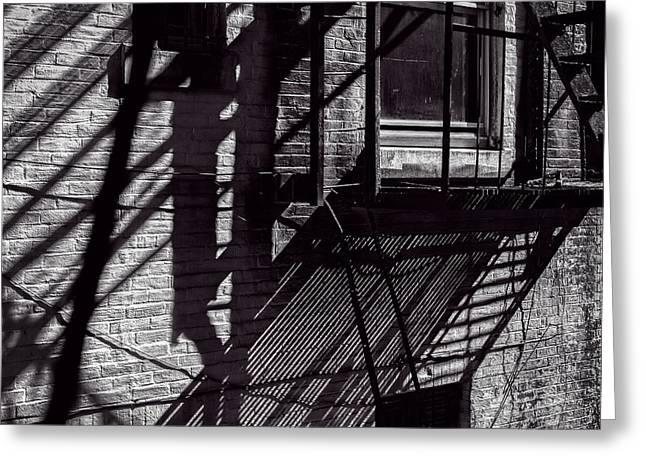 Shadows Greeting Card by Bob Orsillo