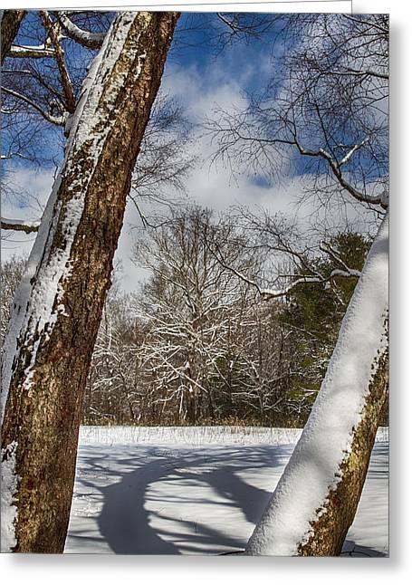 Shadows On The Snow Greeting Card by John Haldane