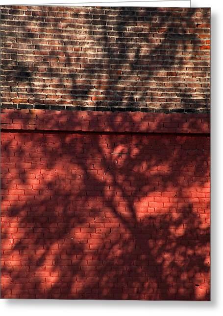 Shadows On The Wall Greeting Card by Karol Livote