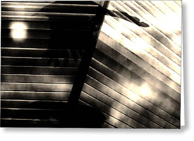Greeting Card featuring the photograph Shadows Symphony  by Jessica Shelton