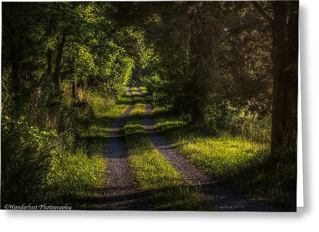 Shady Country Lane Greeting Card by Paul Herrmann