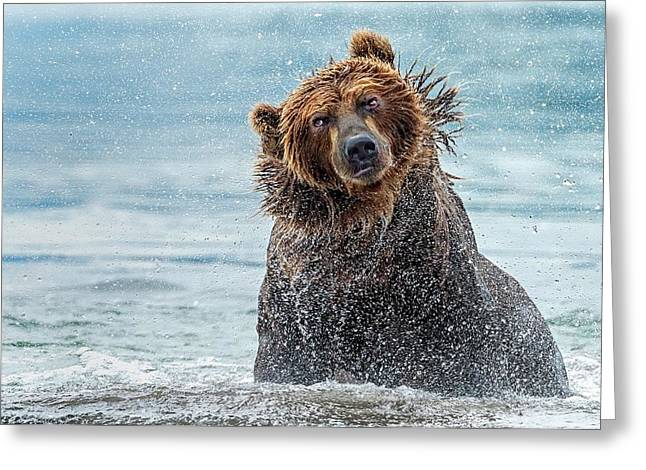 Shaking - Kamchatka, Russia Greeting Card