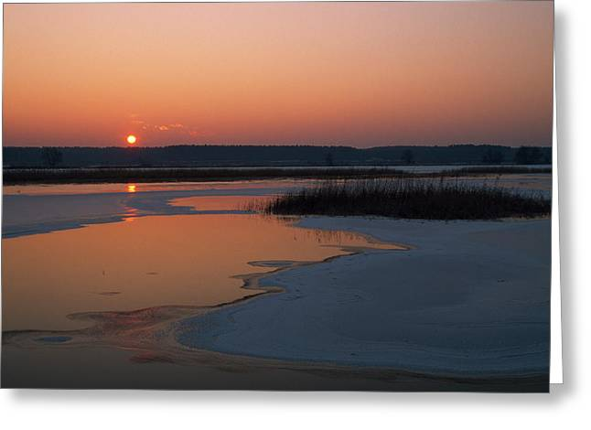 Shallow River Covered With Ice And Reed Greeting Card