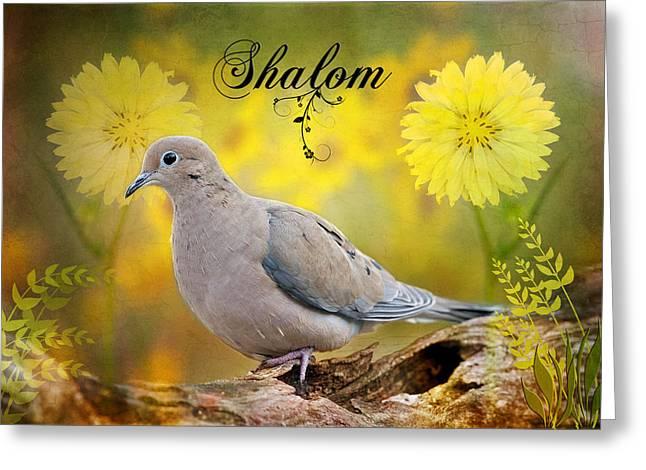 Shalom Greeting Card by Bonnie Barry
