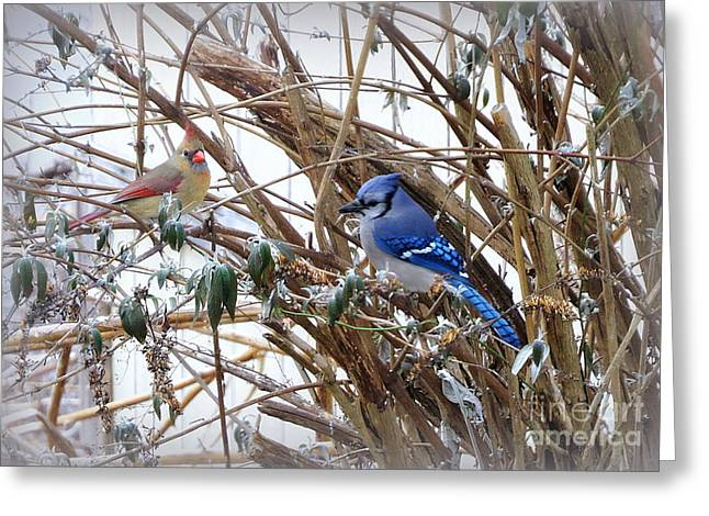 Greeting Card featuring the photograph Sharing by Brenda Bostic