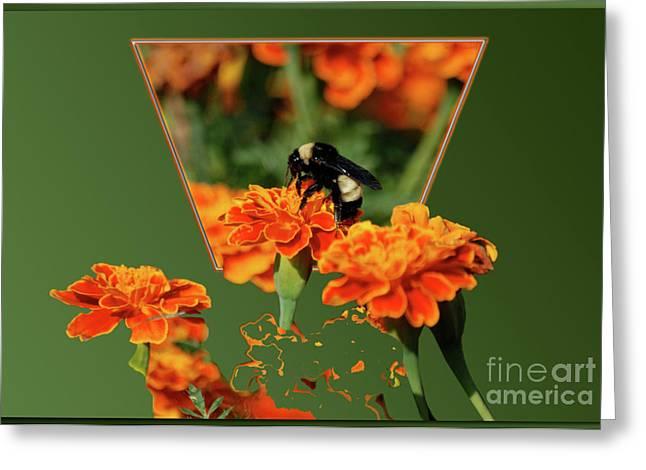 Greeting Card featuring the photograph Sharing The Nectar Of Life by Thomas Woolworth