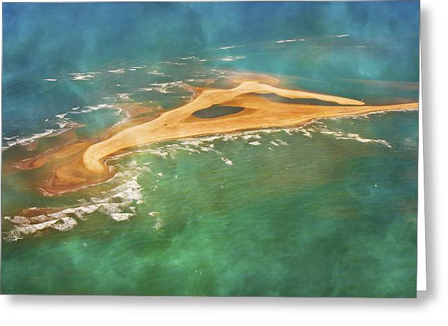 Shark Island Nc Greeting Card by Betsy Knapp