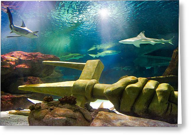 Shark Tank Trident Greeting Card by Bill Pevlor