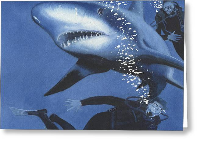 Sharkbait Greeting Card by Denny Bond