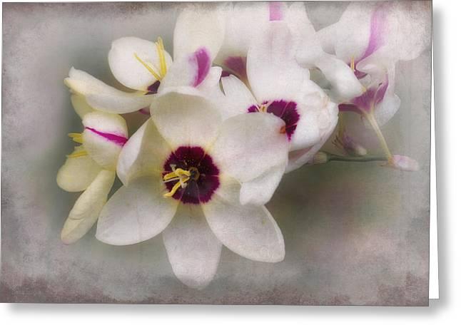 Sharon Greeting Card by Elaine Teague
