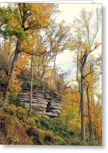 Greeting Card featuring the photograph Shawee Bluff In Fall by Marty Koch