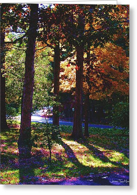 Shawnee Drive Through The Trees Greeting Card by Jeffrey Todd Moore