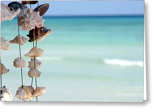 She Sells Seashells Greeting Card by Sophie Vigneault