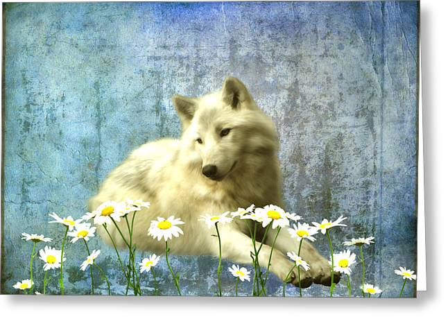 She Wolf Greeting Card by Sharon Lisa Clarke