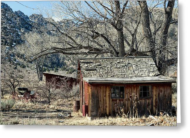 Shed And Buggy Greeting Card by Kathleen Bishop