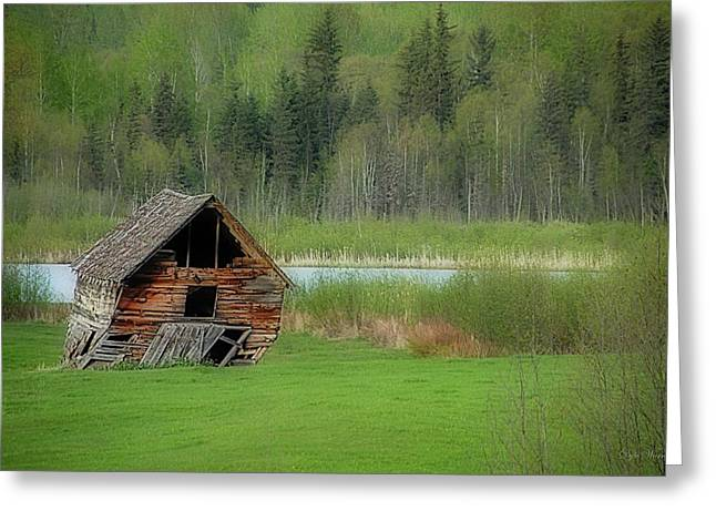 Shed By The Lake Greeting Card by Dyle   Warren