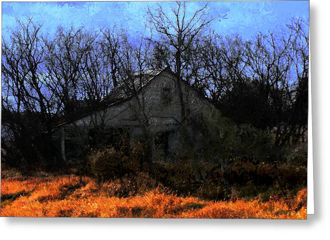 Shed In Brush On Hwy 49 North Of Waupaca Greeting Card by David Blank