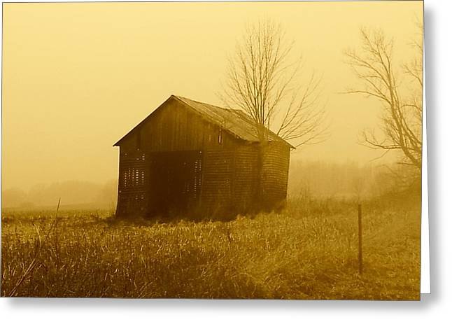 Shed In Field  Greeting Card by Michael L Kimble