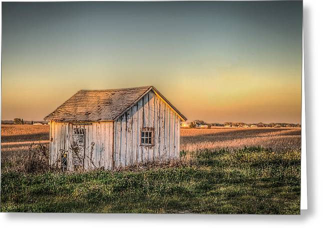 Shed Some Light Greeting Card by Ray Congrove