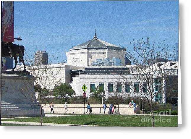 Shedd Aquarium-2 Greeting Card