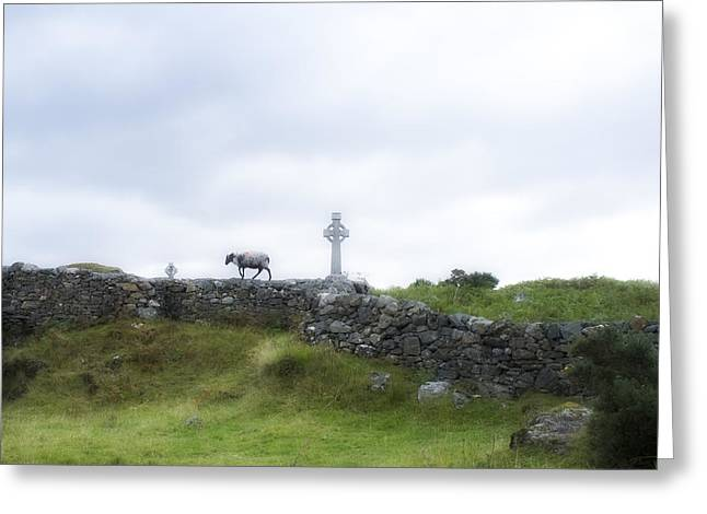 Sheep And Cross Greeting Card by Hugh Smith