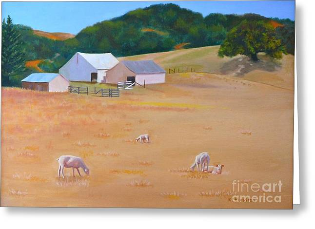 Sheep At Redhill Farm Greeting Card