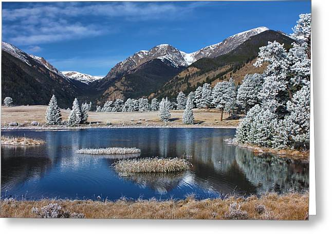 Sheep Lakes In Late October Greeting Card by Darrell E Spangler