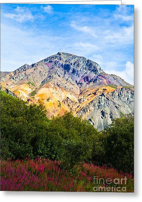 Sheep Mountain Alaska   Greeting Card