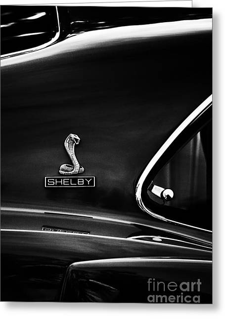 Shelby Mustang Gt350 Greeting Card by Tim Gainey