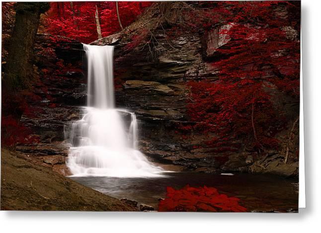 Sheldon Reynolds Waterfalls Greeting Card