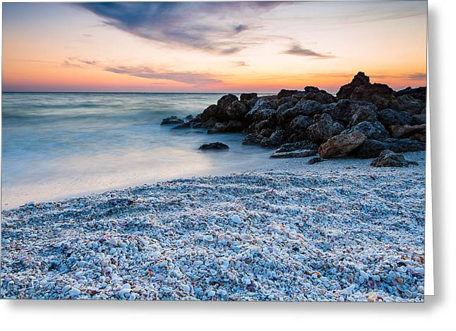 Shell Beach Greeting Card by Adam Pender