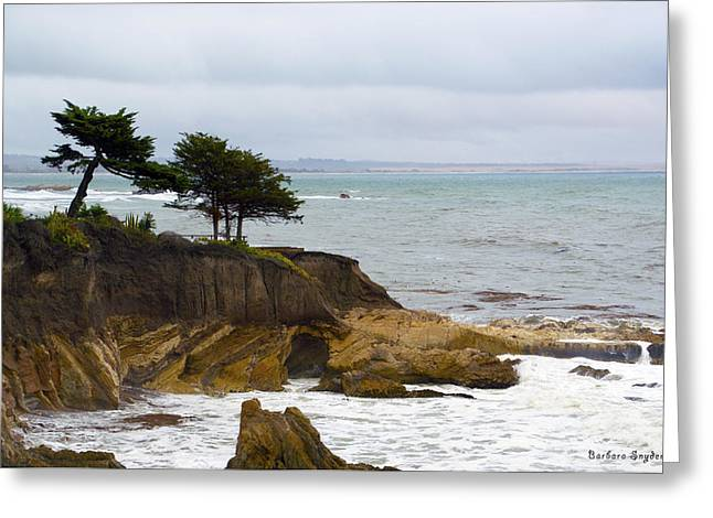 Shell Beach After The Storm II Greeting Card by Barbara Snyder