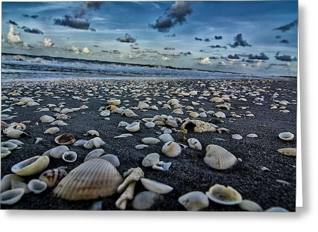 Shell Beach Greeting Card