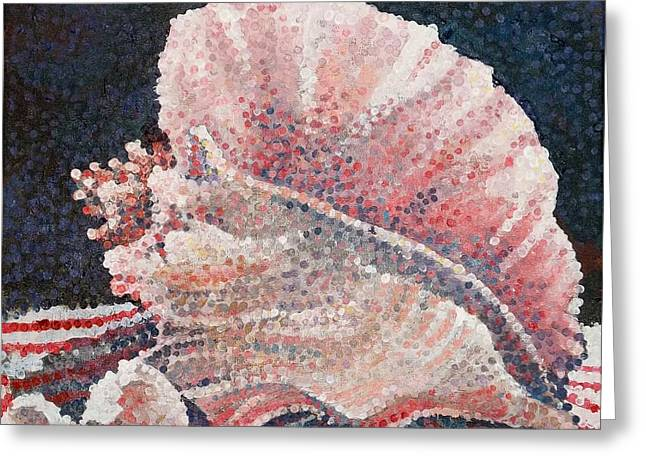 Shell Collection Greeting Card by Micheal Jones