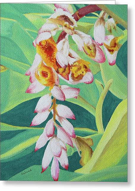 Greeting Card featuring the painting Shell Ginger by Margaret Saheed