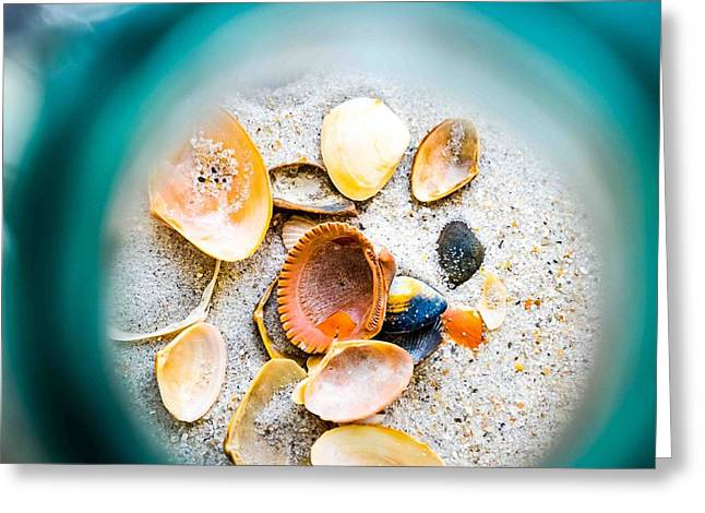 Shell Paradise  Greeting Card
