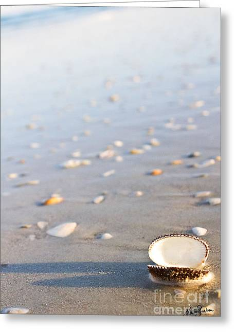 Shells 02 Greeting Card by Melissa Sherbon