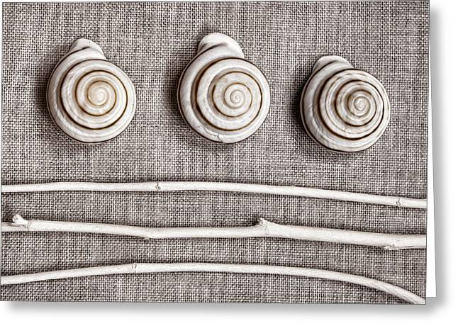 Shells And Sticks Greeting Card