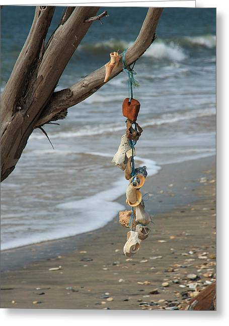 Shells On A String Greeting Card