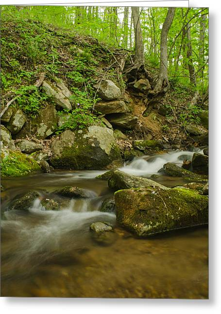 Shenandoah Stream No. 2 Greeting Card