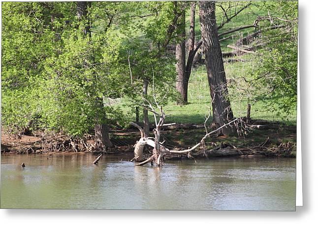 Shenandoah Valley - 011337 Greeting Card